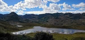 Reserva natural El Cajas