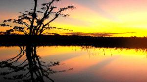 Laguna Grande en el cuyabeno