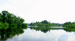 Lagunas en shushufindi