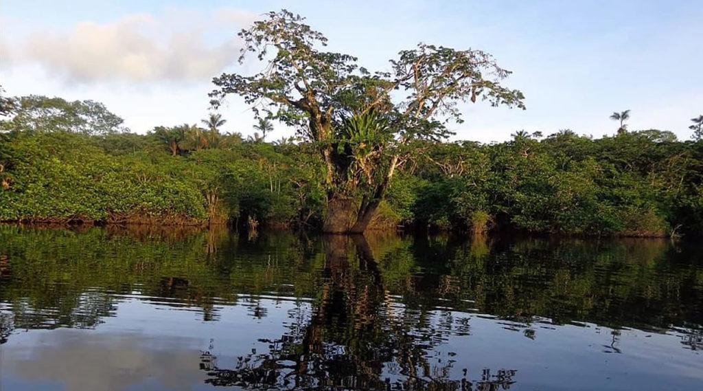 Laguna Delfincocha