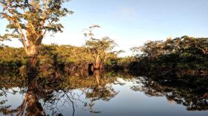 Laguna El Encanto en Cuyabeno