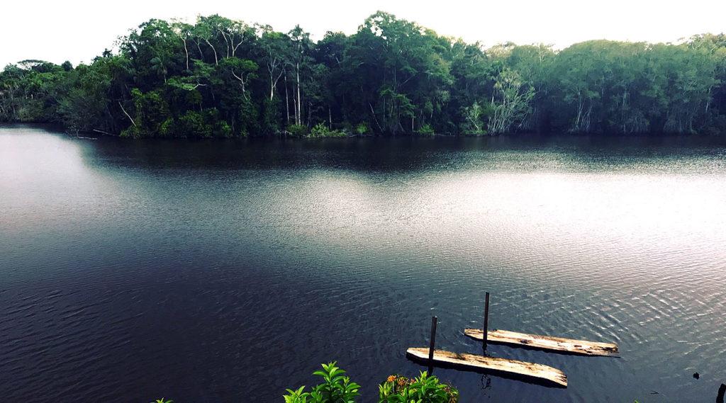 Laguna en el yasuni