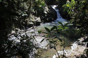 Rio cercano a guayabillas